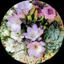 prodotti_fiori-recisi