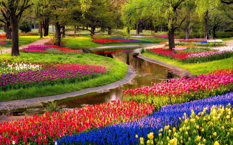 5 consigli per organizzare un giardino fiorito lombarda flor for Organizzare giardino