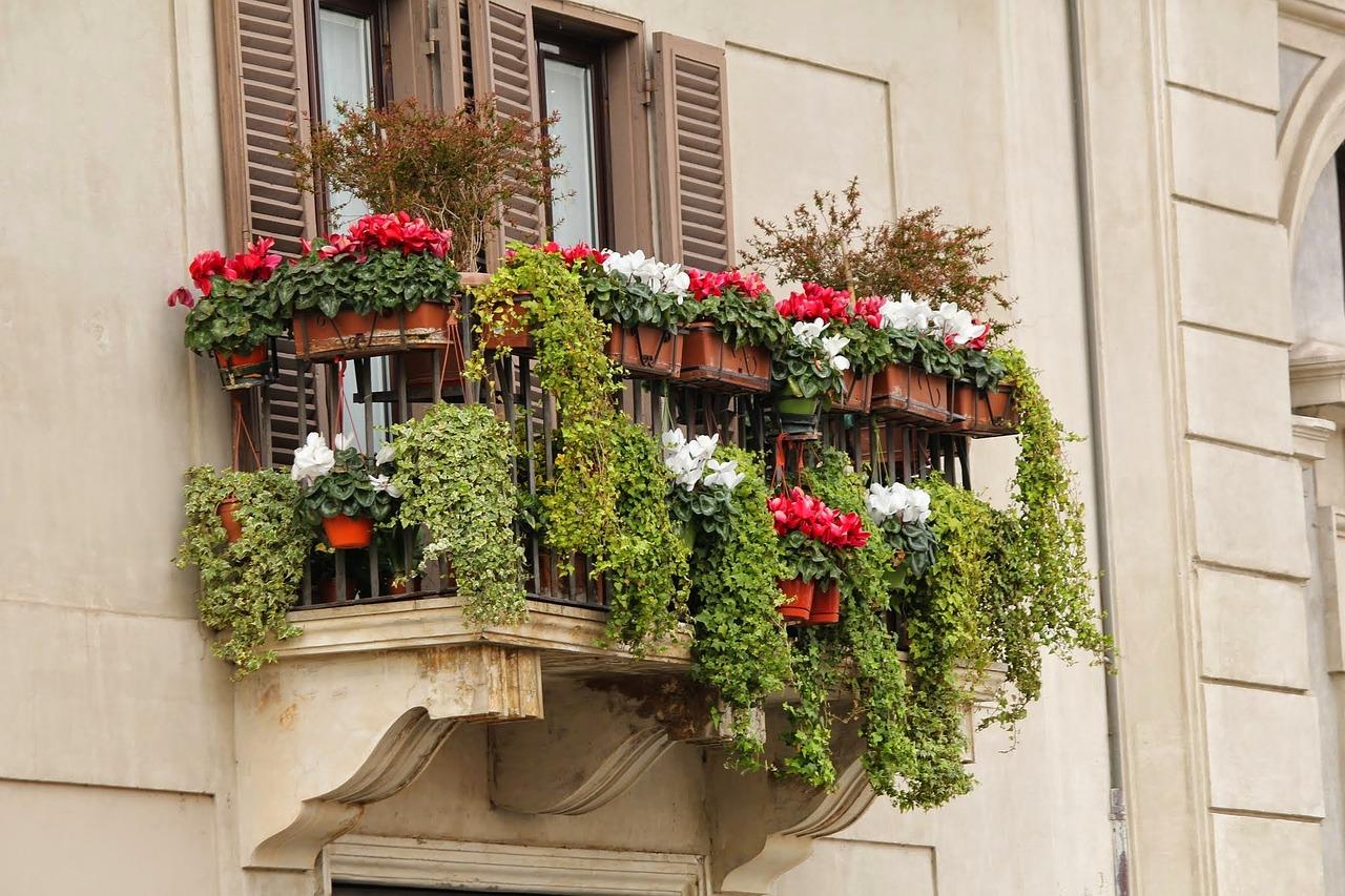 Piante Balcone Est : Le piante e i fiori giusti per un terrazzo esposto a est