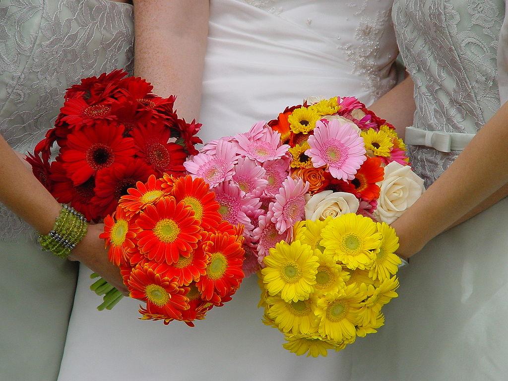 Bouquet Sposa Gerbere.Le Idee Piu Originali Per Un Bouquet Da Sposa Con Le Gerbere